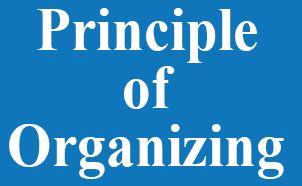 医療法人を経営する上で自分が再確認した4つの原理原則